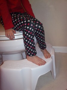Little Looster Potty Training Step Stool Emily Reviews