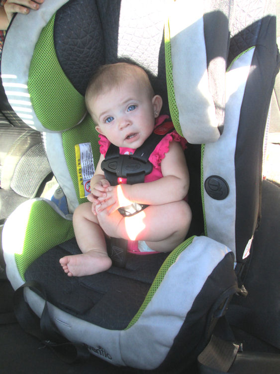 All In One Car Seat Kelsie2 6 Months Evenflo Symphony DLX Kelsieclose