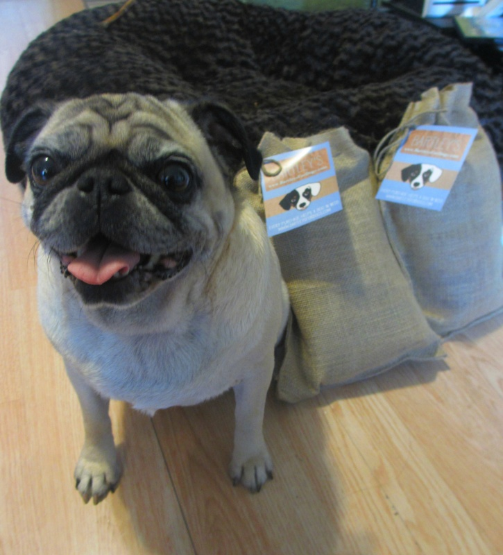 Bartley's for dogs gift bag