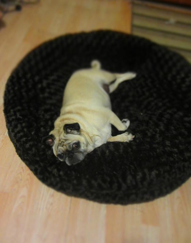 baylee nasco washable dog beds