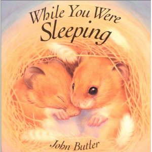 While You Were Sleeping Toddler Gift Idea