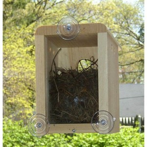 Window Nest Box - great gift idea for gardeners and bird or nature lovers!