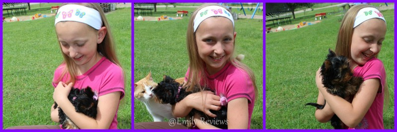 logo loops ~ Headbands With Personality ~ Review   Giveaway (US) 7 3 ... 0ef7b985cbc