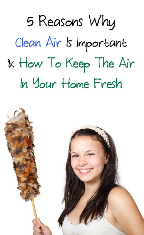 how to keep the air cleaner