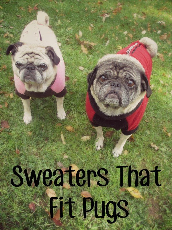 Sweaters For Large Chested Dogs