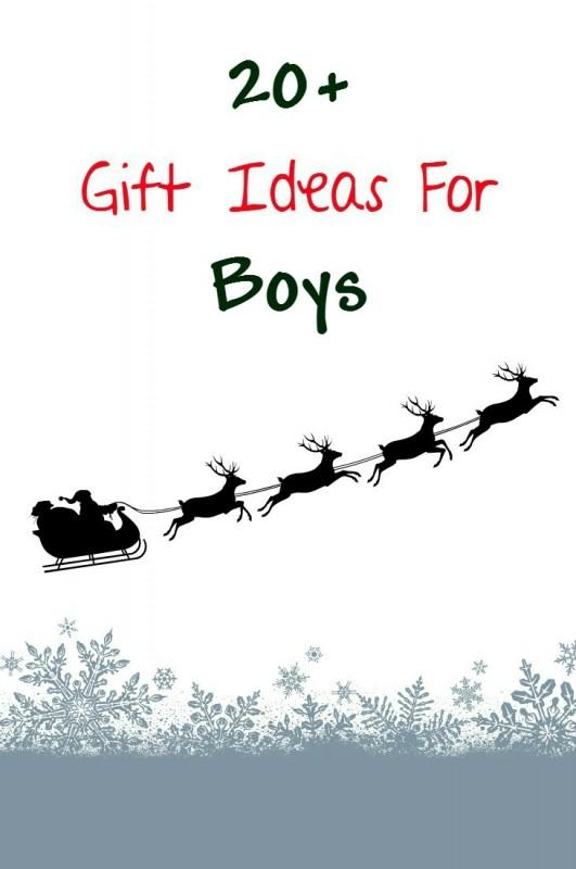 20 Gift Ideas For Boys Emily Reviews