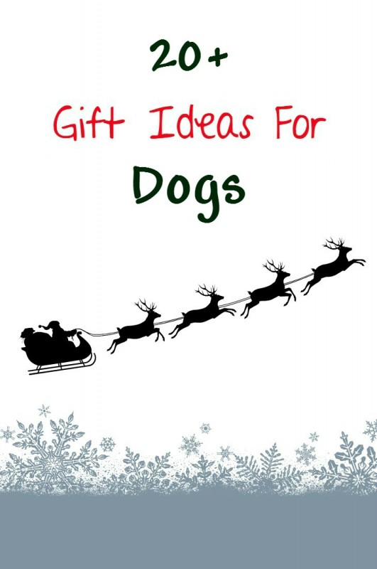 20+ gift ideas for your dog. Dogs want christmas gifts too!
