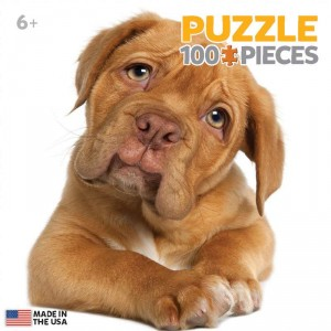 Puzzle Warehouse MGG STOCK IMAGE