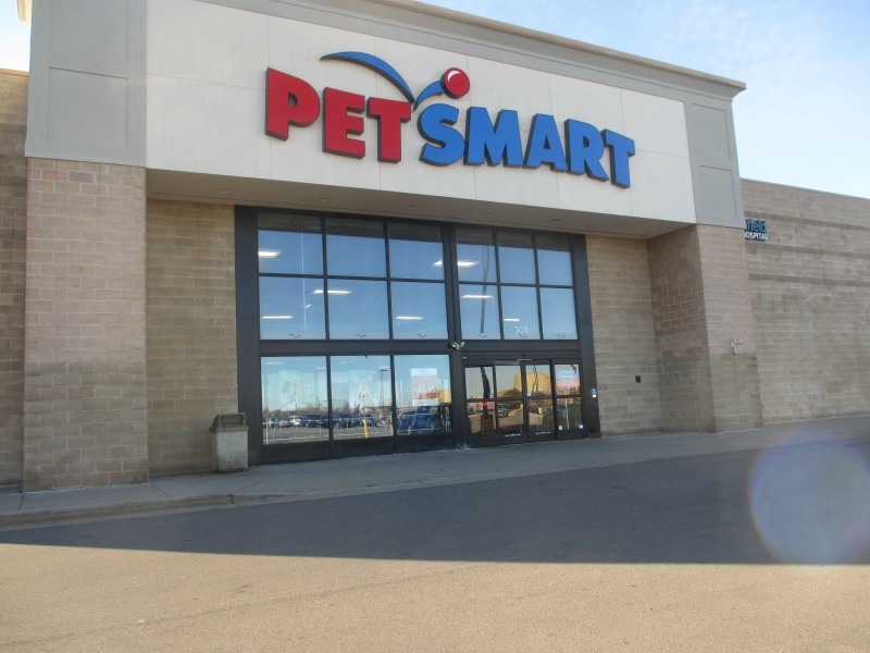 Bayer Expertcare Skincare For Dogs At Petsmart