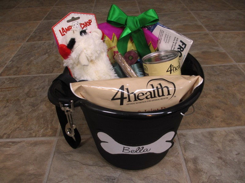 DIY Dog Gift Basket Christmas or Donation Idea | Emily Reviews