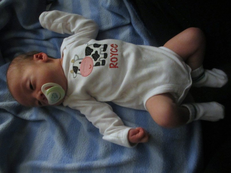 Littlelettersshop etsy shop for personalized baby gifts review little letters shop personalized cow onesie negle Gallery