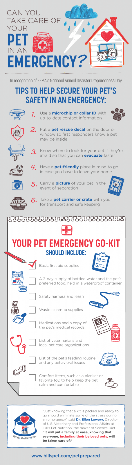 pet emergency go kit
