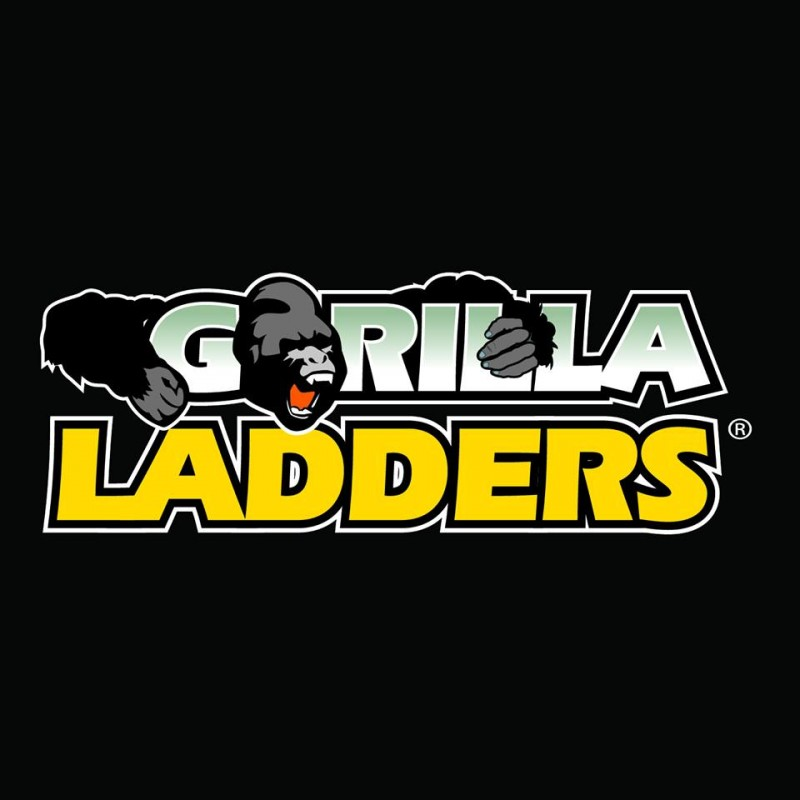 Gorilla Ladders 5 5 ft  Aluminum Hybrid Ladder ~ Review | Emily Reviews