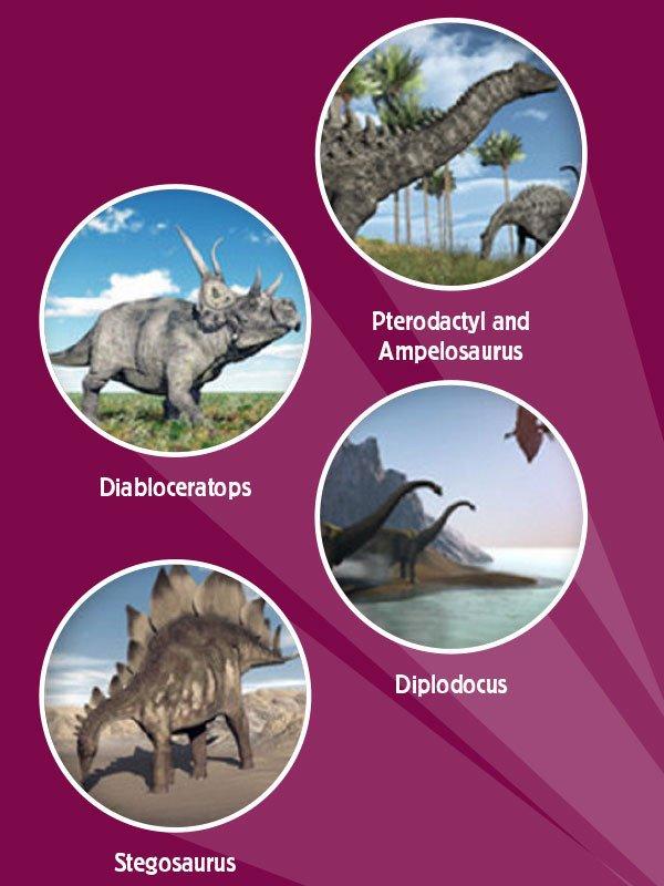 dinosaur_projections_1024x1024