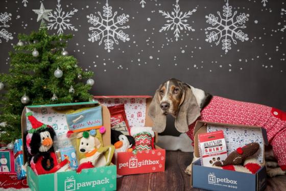 PetGiftBox Discount + Giveaway (US) 12/22