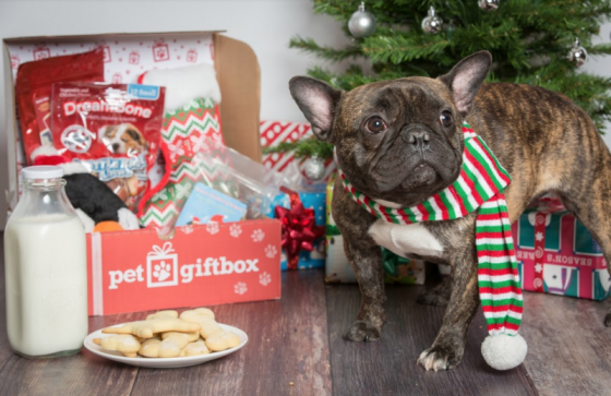 We Woof You A Merry Christmas {From PetGiftBox} + Discount