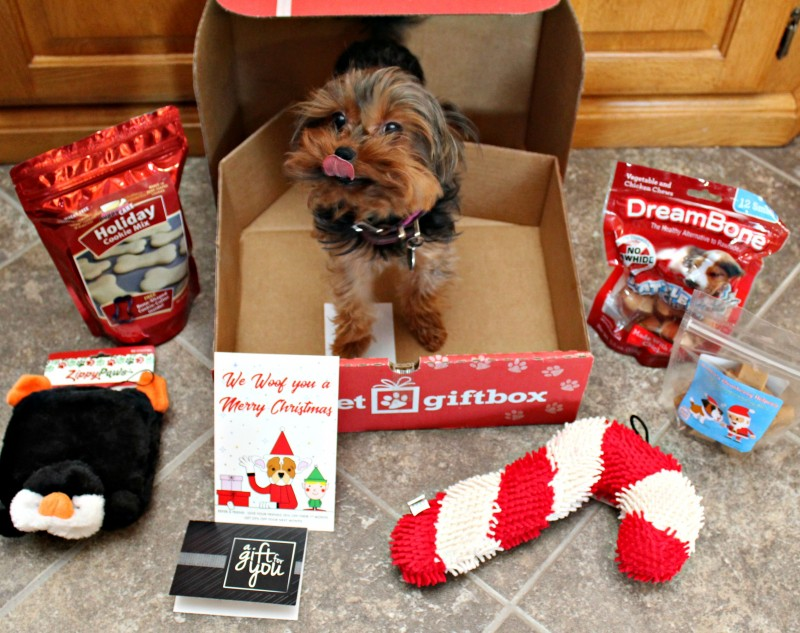 Pet Gift Box Montly Subscription Box