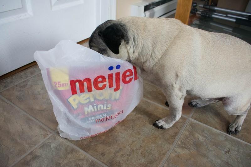 Meijer pup-peroni dog treats
