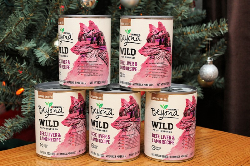 Chewy.com Brings Your Pet's Favorites Right To Your Door Step {Purina Beyond Wild Prey-Inspired Beef, Liver & Lamb Recipe Canned Dog Food}