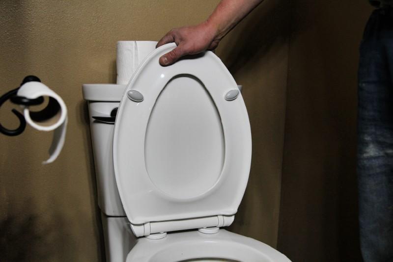 Bemis Push 'N Clean Toilet Seat