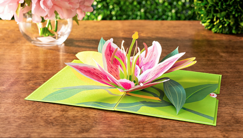 Lovepop Cards - A Card With Flair And A Pop Of Surprise (3d cards)