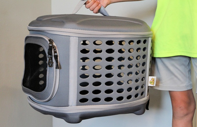 Pet Magasin Collapsible Pet Carrier & Pet Beds