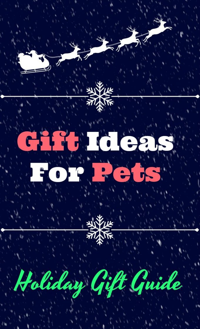 Gift ideas for pets: 2019 gift guide for cats and dogs