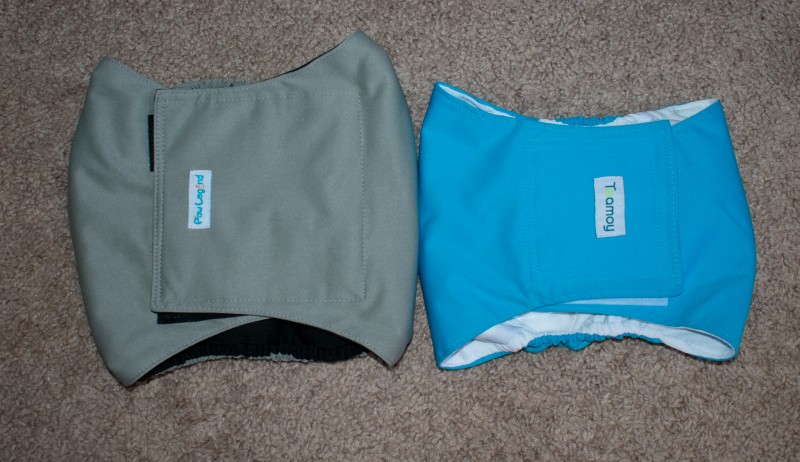 paw legend belly band and teamoy belly band review comparison