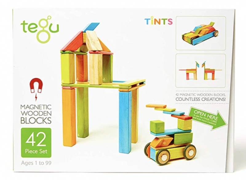 Tegu Magnetic Building Blocks