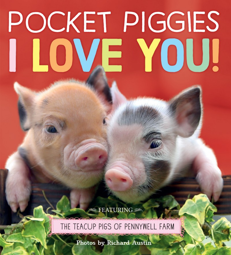 Pocket Piggies I Love You Book